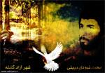 محمد نبودی ببینی